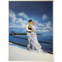 """Картина Swarovski """"Свадебное путешествие"""""""